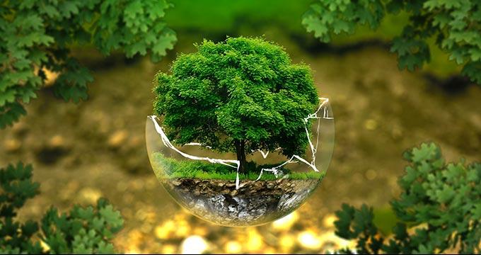 Environmental Impact Assessment Reports