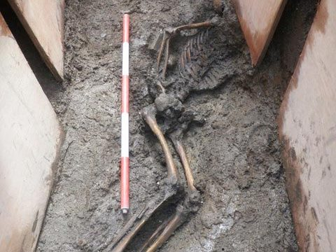 Medieval Human Remains Trinity College Dublin